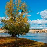 Autumn on the Vltava River
